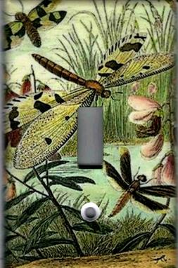 DRAGONFLIES HOME WALL DECOR SINGLE LIGHT SWITCH PLATE