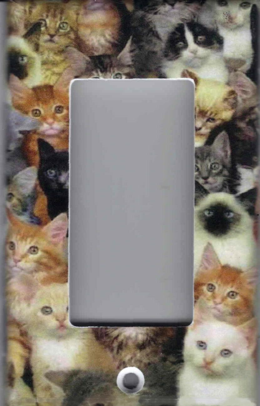 CATS, CATS, CATS WALL DECOR PLATES AND OUTLETS